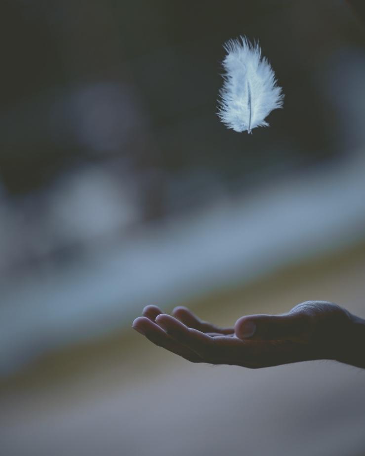 Peace-Mark-Good News-Jeremiah's Menu