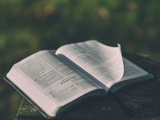 Windblown-Plans-Preparing-Jeremiah's Menu-Obey