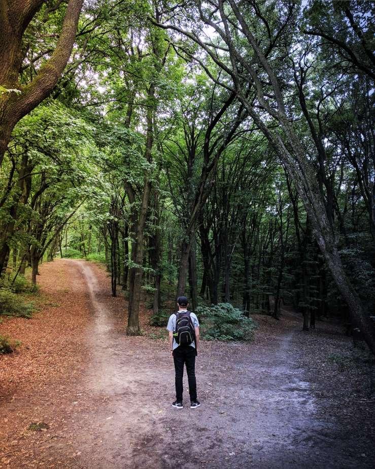 Free will-choose-heaven or hell-Jeremiah's Menu